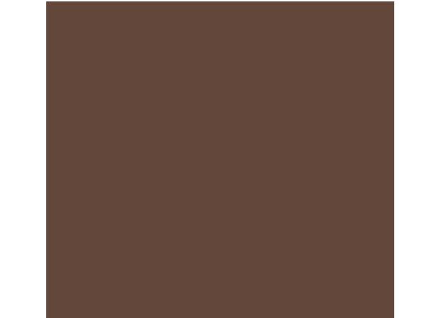 DesiHangover